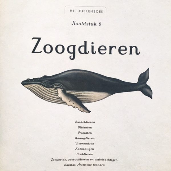 Het Dierenboek De Verhalenwinkel
