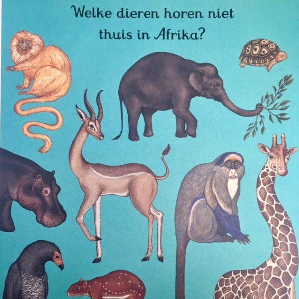 Het leukste dierendoeboek-De Verhalenwinkel