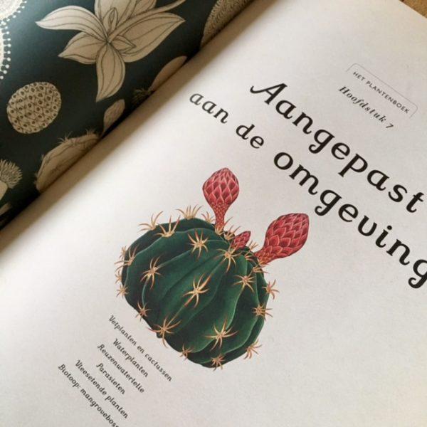 Het Plantenboek-De Verhalenwinkel