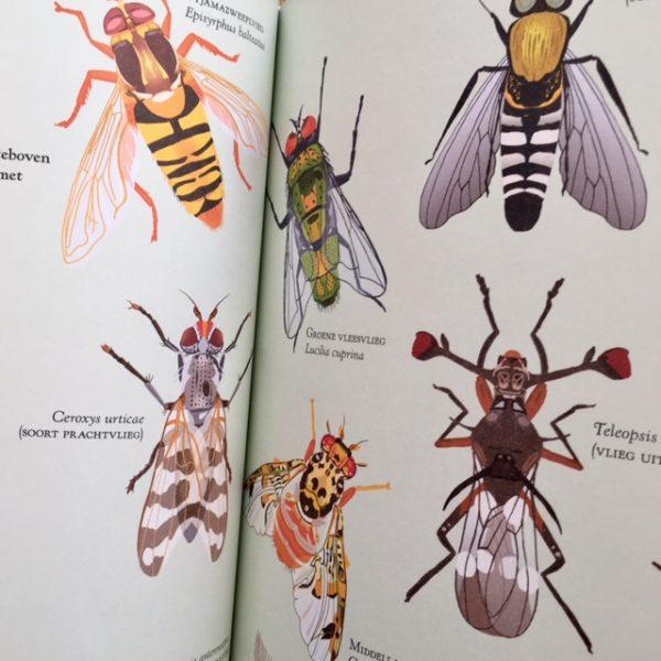 Insectenrijk-De Verhalenwinkel